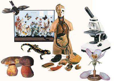 2_Biologie.jpg