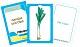 Gemüse und Obst - Kartenset zum Magischen Zylinder