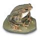 Erdkröte - Tierplastik