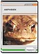 Amphibien - DVD
