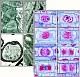 Zellen u. Gewebe im Elektronenmikroskop
